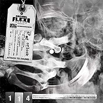 Decibel Flexi Series