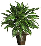 Nearly Natural 6615 Silver King with Basket Decorative Silk Plant, Green