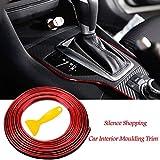 Carta Trim Strip - una varietà di colori - il colore del carattere duraturo, la nostra striscia di bordo auto incorporata montata in auto e non causerà danni alla superficie dell'auto, super flessibile, rende questa striscia di taglio auto facile da ...