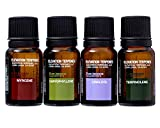 Elevation Terpenes Relaxation Four Pack (Beta Caryophyllene, Linalool, Myrcene, Terpinolene)
