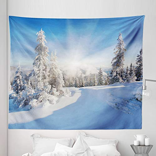 Lunarable Snow Tapestry King Size, Frostynd Sunny Day in Snow Clear Sky Snowfall Ideal Winter Landscape Sun Rays, Wall Hanging Bedspread Bed Cover Wall Decor, 104' X 88', Multicolor