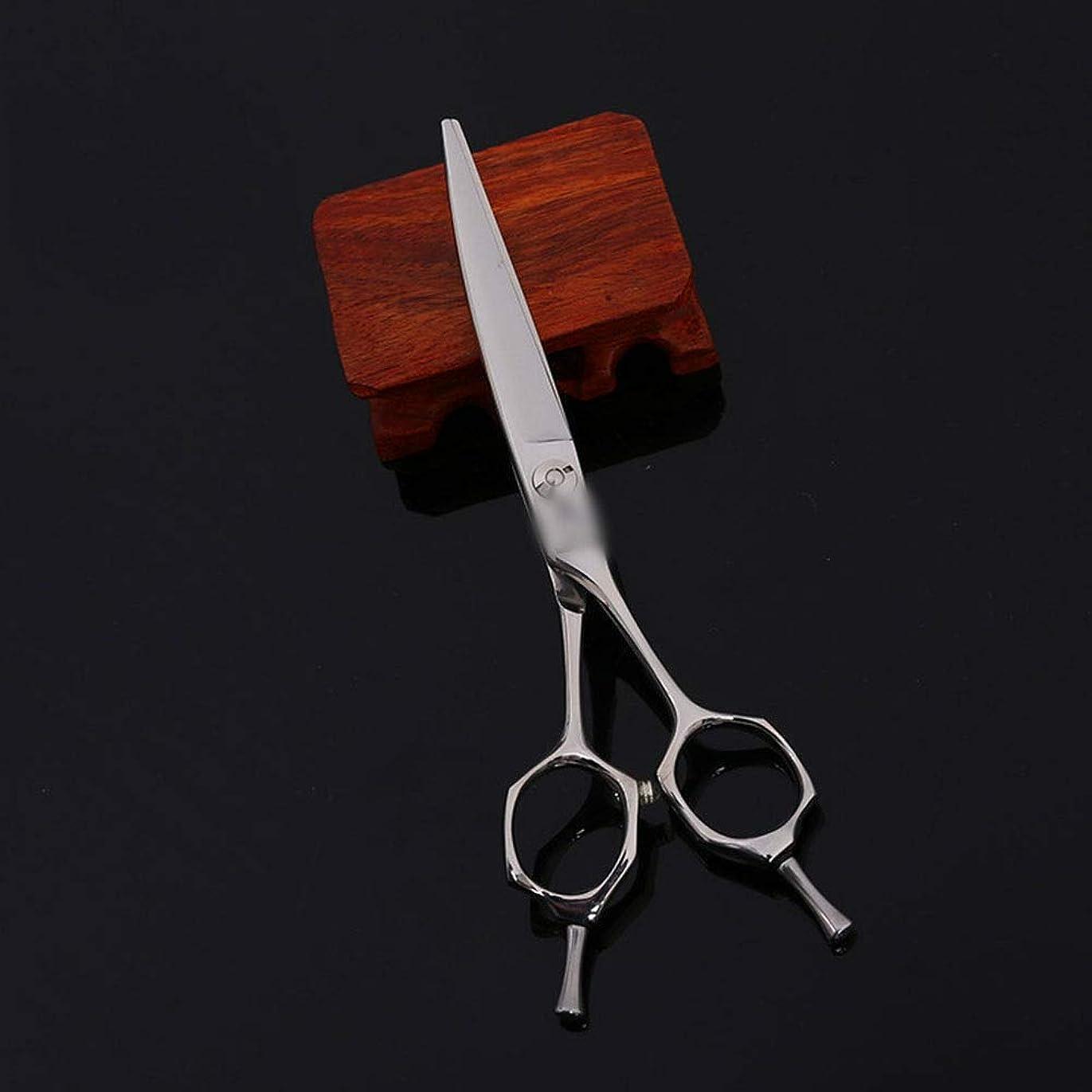 スリップシューズ常習者割合Hairdressing 6インチ美容院プロフェッショナルファミリーハイエンド理髪はさみ髪カット鋏ステンレス理髪はさみ (色 : Silver)