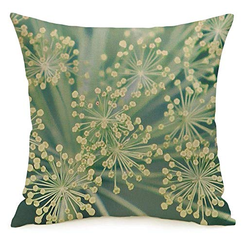Pillowcase Cushion Case Fennel Foeniculum Close Or Twig Medicine Vulgare Vegetarian Best Food Medium Scale Nature Textures Cozy Linen Square Decorative Throw Pillow Covers for Couch Bed 16x16 Inch