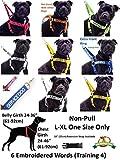 """Dexil Personalisierbares Hunde-Halstuch, Aufschrift """"Friendly"""", Grün, modisches Halstuch, verhindert Unfälle durch Vorwarnen anderer Hunde - 6"""