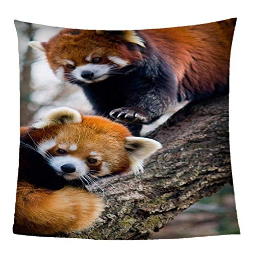 ZZZXX Manta De Paño Animales Dos Pandas Rojos 180X200Cm Colchas Y Cubrecamas Textiles del Hogar Unisex Adulto,Blanket Fleece Throw Blanket Super Soft Lightweight For Kids