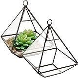 MyGift Hanging Clear Glass Geometric Pyramid-Shaped Succulent/Air Plant Terrarium, Set of 2