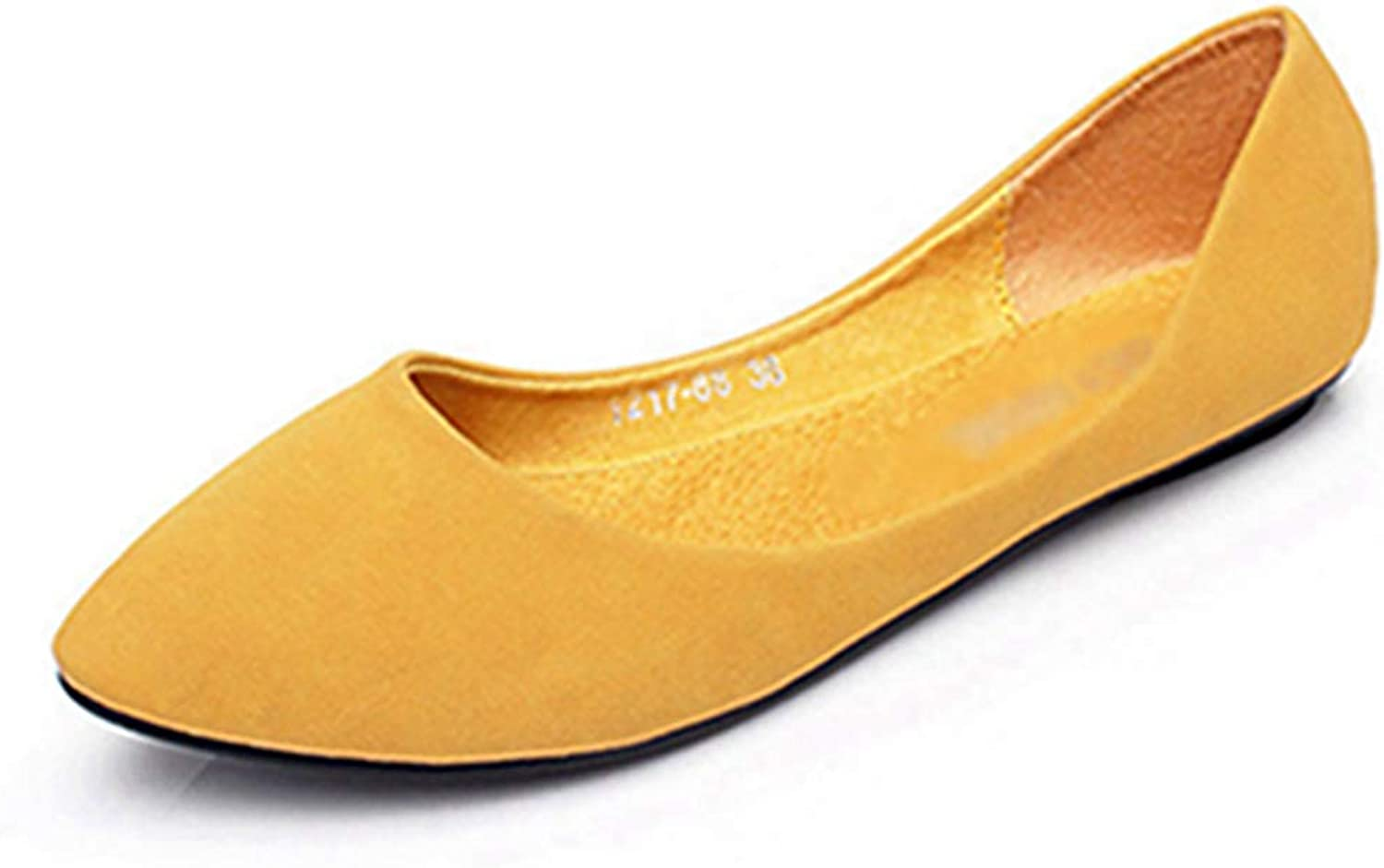 Women Flats, Fashion Pointed Toe Slip On Women's Soft Work Office shoes