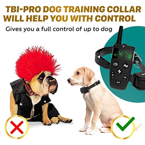 All-New 2019 Dog Training Collar with Remote   Long Range 1600', Shock, Vibration Control, Rechargeable & Ipx7 Waterproof   E-Collar Shock Collar for Dogs Small, Medium, Large Size, All Breeds