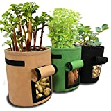 Saco de plantación de Patatas de 3 Piezas Bolsas para Verduras Saco de Patatas Bolsa hortícola Transpirable, macetas de Tela de Tomate para Plantar con Jardinera, Bolsa de plantación de Zanahorias