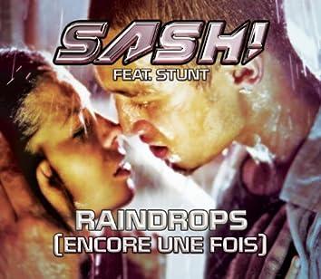 Raindrops (Encore Une Fois Pt.2)