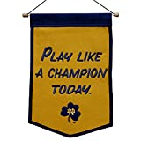 NCAA Notre Dame Fighting Irish 64237 Sports Fan Home Decor, gold, banner