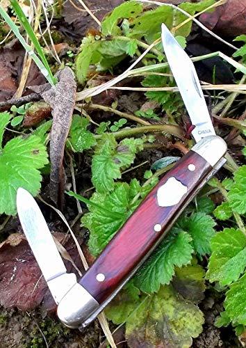 Laguiole Winchester 1. Kliene Handliche Gartenarbeit und seltsame Aufgaben traditionelles Taschenmesser