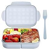 Bento Box Erwachsene Brotdose Kinder mit 3 Fächern Lunchbox Auslaufsicher Mikrowellenfest (Mit Gabel,Blau)
