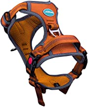 ThinkPet No Pull Harness Breathable Sport Harness with Handle-Dog Harnesses Reflective Adjustable for Medium Large Dogs,Back/Front Clip for Easy Control M Orange