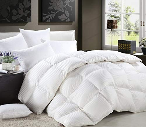 ALBAD Queen Goose Down Comforter All Season Duvet Insert Cotton Soft Lightweight Quilt Hypersensitivity