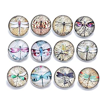 Ginooars Pack of 12pcs Dragonfly Theme 20mm Snap Button Charms for Bracelets Jewelry Supplies