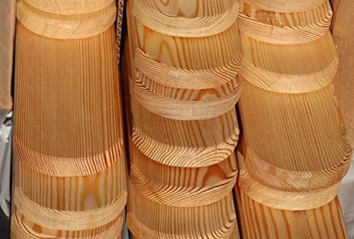 Holzhandel-OWL Zaunlatten Holzzaun Sibirische Lärche 2x9x100 cm 24 Stück