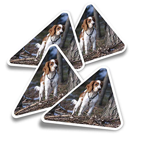 Vinyl Triangle Stickers (Set of 4) - Welsh Springer Spaniel Dog Puppy Fun Decals for Laptops,Tablets,Luggage,Scrap Booking,Fridges #16839