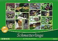 Schmetterlinge der Botanika Bremen (Wandkalender 2022 DIN A3 quer): Der Schmetterling, der von Blume zu Blume flattert, bleibt immer mein; den ich im Netz fange, verliere ich. (Monatskalender, 14 Seiten )