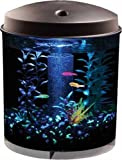 Aquarius Aq360-2g Gloview 2-Gallon Aquarium Kit