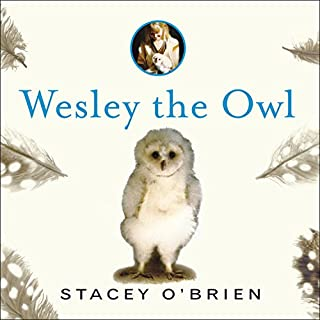 Wesley the Owl audiobook cover art