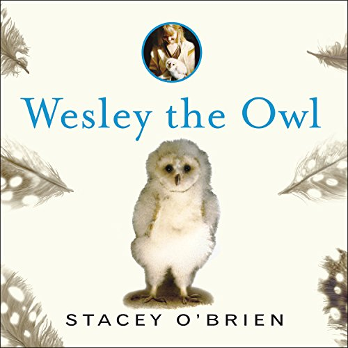 Wesley the Owl Audiobook By Stacey O'Brien cover art