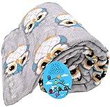 DBD Home Fun Print Soft Cozy Lightweight 50 x 60 Fleece Throw Blanket with Fun Magnet! (Adorable Owls)
