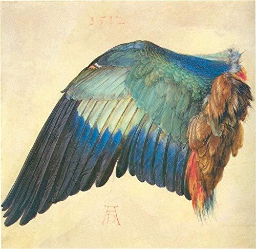 DIY Ölgemälde Kit Malen nach Zahlen Kit für Kinder und Erwachsene -Albrecht Dürer Flügel einer europäischen Walze-40x50cm mit Rahmen