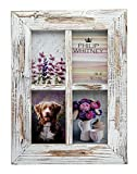 Philip Whitney Barnwood White Collage Photo Frame - Holds Four 4x6 Pictures