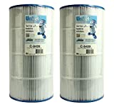 Unicel C-8409 Swimming Pool Replacement Filter Cartridge (2 Pack)