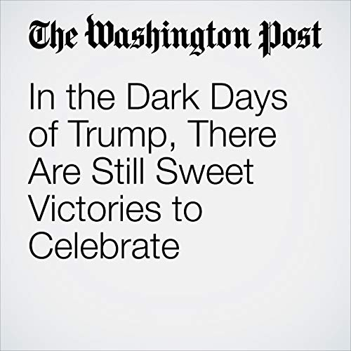 In the Dark Days of Trump, There Are Still Sweet Victories to Celebrate copertina