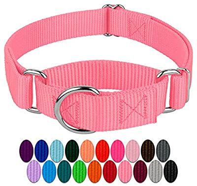 Country Brook Design - Martingale Heavyduty Nylon Dog Collar (Small, 3/4 Inch Wide, Pink)