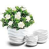 Fasmov 3 Pack Round Modern Ceramic Garden Flower Pots White Succulent Cactus Plant Pots