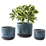 YISHANG Succulent Plant Pots,6.7+5.3+4.1 in Glazed Ceramic Planters with Connected Saucers, Round Modern Ceramic Flower pots - Small to Large Sized Plant pots for All House Plants(Bright Blue)