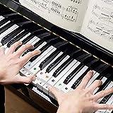 Immagine 1 adesivi per tastiera o pianoforte