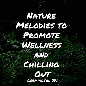 Nature Melodies to Promote Wellness and Chilling Out