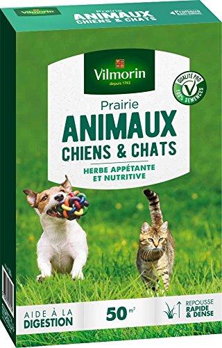 Vilmorin 4461212 Prairie Animaux Chiens et Chats, Vert, 5.80 x 14.5 x 22 cm