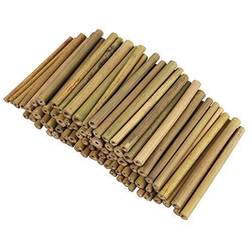 Bambusstäbe, Bambus Stöcke - 100 Stk Bambusstangen für Kinder und Erwachsene zum Basteln, für Mobile, Windspiel, Bienenhotel, Insektenhotel, als Nisthilfe, Füllmaterial, Dekoration – Bambus Röhrchen