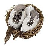 Pájaros realistas con plumas, pájaros artificiales realistas con huevo de nido para decoración de jardín y hogar