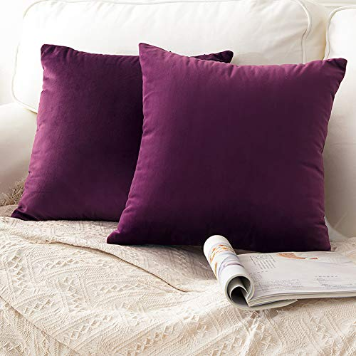 CCRoom Cushion Covers,Pack 2 of Decorative Throw Pillow Covers in Velvet Square Cushion Cases with Concealed Zip 18' x 18' 45cm x 45cm(Eggplant Purple)