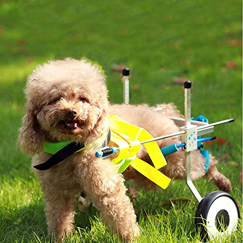 Purchase ZXDFG Disabled Dog Assisted Walk Car Hind Leg Exercise Car Pet Moped Dog Wheelchair Suitabl...