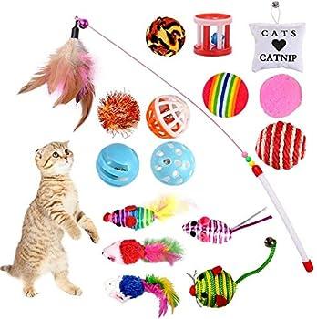 GOLDGE Jouets Chat Interactif, 16 pièces Jouets Chat, Souris, Balles, Baguettes de Plumes pour Kitty interactifs