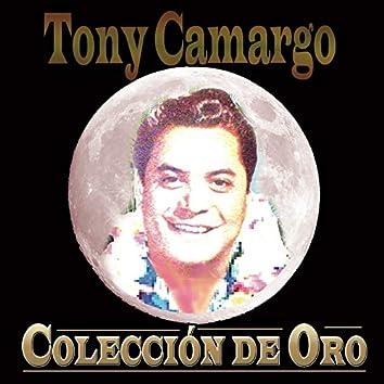Tony Camargo Colección De Oro