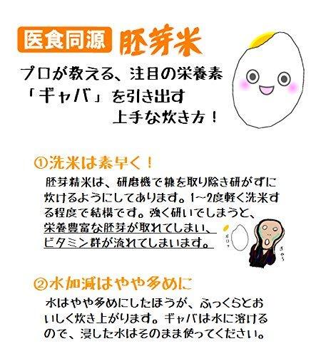 米お米5kgひのひかり胚芽米令和元年岡山県産送料無料