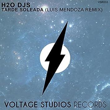 Tarde Soleada (Luis Mendoza Remix)