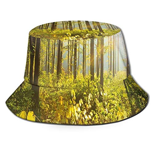 N\C Packable Reversible Negro Impreso Pescador Cubo Sombrero Sol Árboles Rayos Sol En Bosques Follaje Verdadero Pintoresco Al Aire Libre Tranquilo Sombrero Sin Tocar