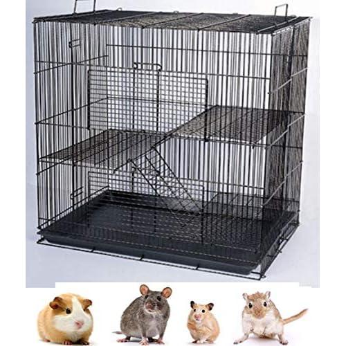 Rat Cages Amazoncom