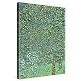 PICANOVA – Gustav Klimt Rosebushes Under The Trees 60x80cm – Cuadro sobre Lienzo – Impresión En Lienzo Montado sobre Marco De Madera (2cm) – Disponible En Varios Tamaños