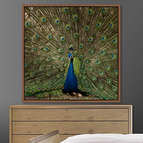 """bestdeal depot Peacock Framed Canvas Wall Art Prints for Living Room,Bedroom Framed Artwork Decoration Ready to Hang - 24""""x24"""" inches"""