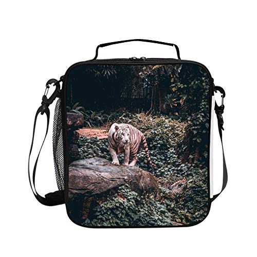 Insulated Lunch Boxes (Tiger Walk) with Shoulder Strap and Extra Storage Pocket Best Lunch Box for Portion Control Diet